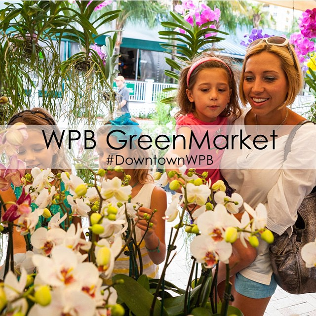 Tomorrow is your last chance to enjoy the #WPBGreenMarket until October. Join us on the Waterfront  from 9 a.m.-1 p.m. See you there! #downtownwpb #ilovewpb #fresh #freshgoods #wpb #westpalmbeach #palmbeach #greenmarket #farmersmarket #marketgoods